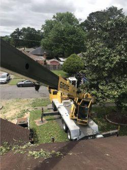 Allan's Tree Service